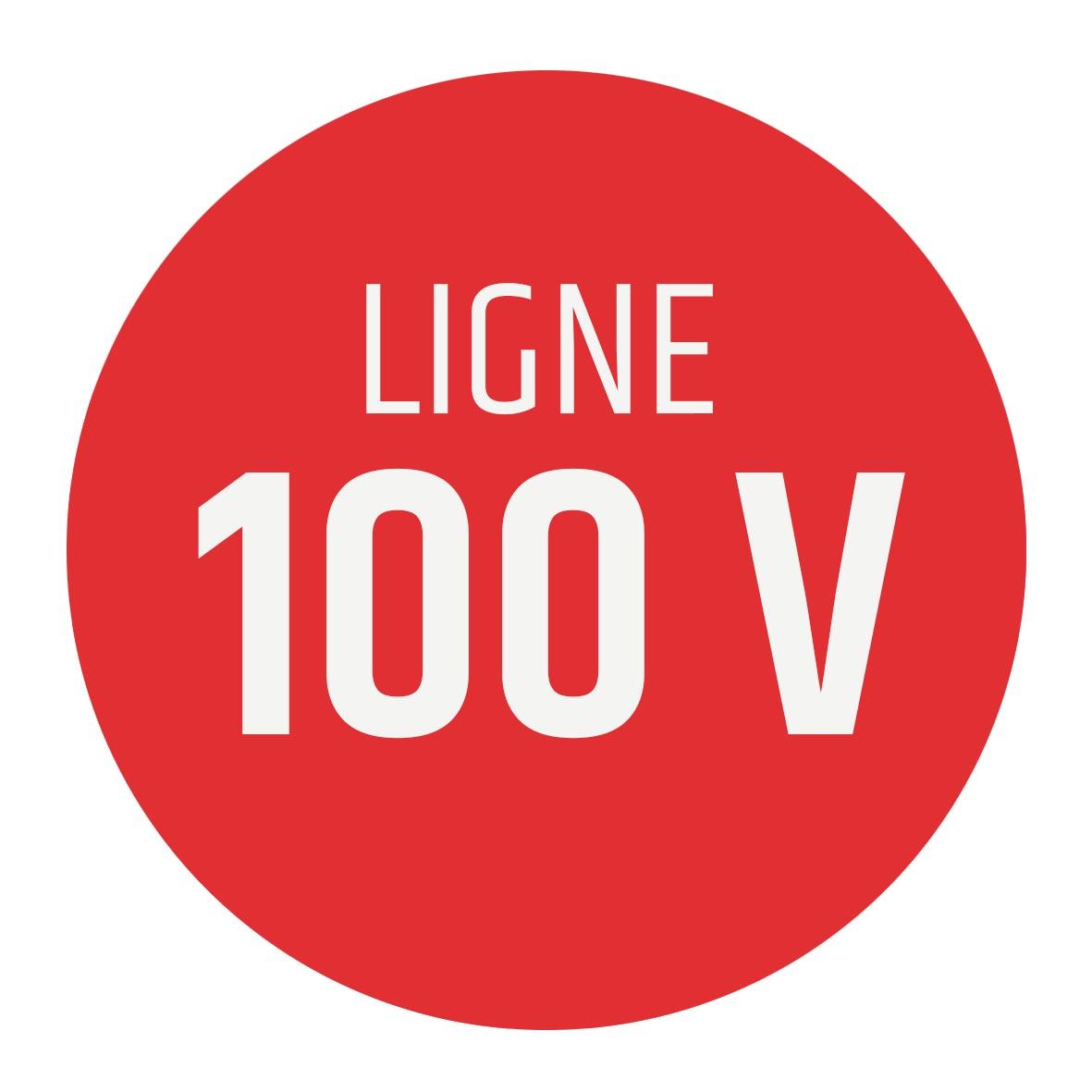 logo ligne 100 V
